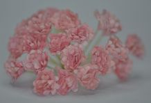 PEACH PINK GYPSOPHILA / FORGET ME NOT Mulberry Paper Flowers (2)